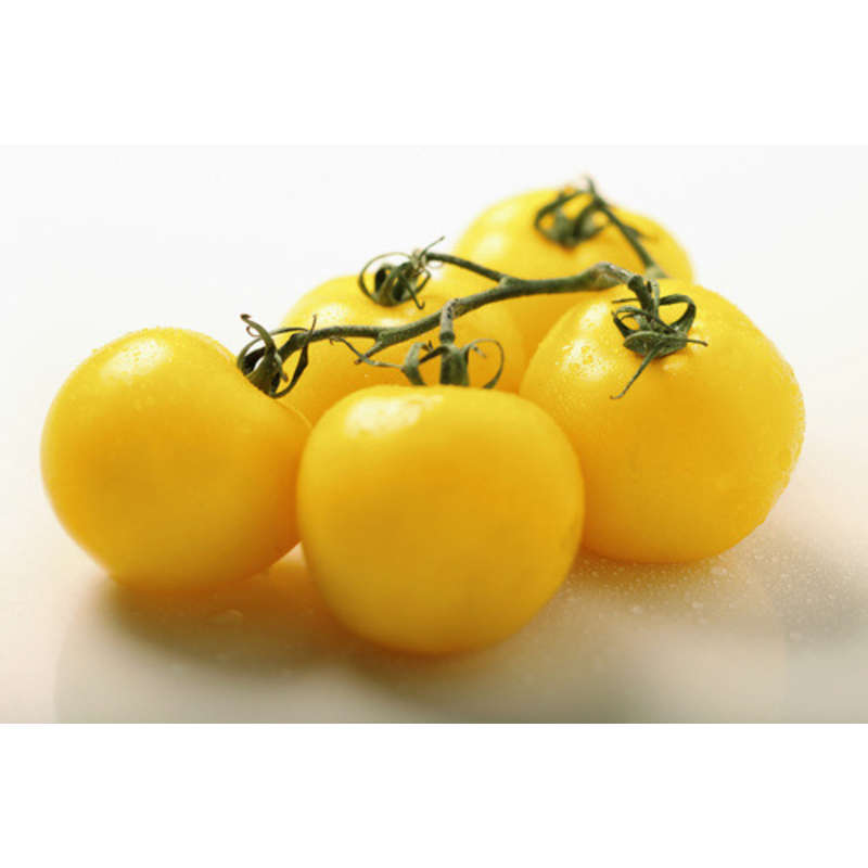 Tomate ronde grappe jaune